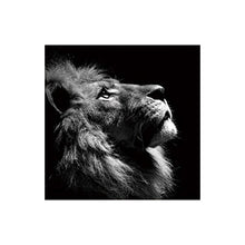 Load image into Gallery viewer, Black and White Lion Picture Home Decor Wall Art Nordic Canvas Painting Vivid Animal Modern Art Print and Poster for Living Room