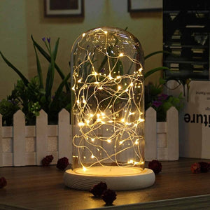 Glass Dome Bell Jar Cloche Display Wooden Base 20 LED Fairy String Light Home Decor Bedroom Desk Night Light for Christmas Gift