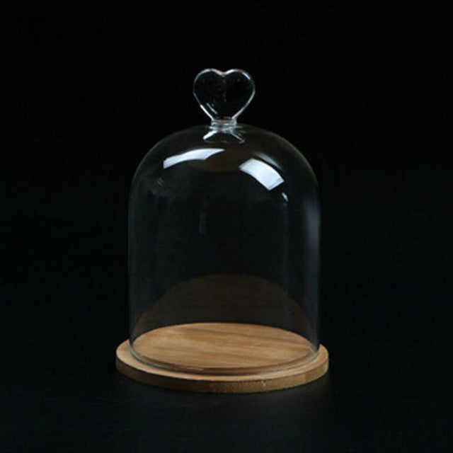 Home Decor Vases Glass Flower Display Cloche Bell Jar Dome Immortal Preservation + Wooden Base Everlasting Flower Glass Cover