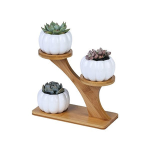 Nordic Style Flower Pots Planters for Succulents Plant Flower Pot Holder Ceramic Owl Pumpkin Pattern Pot Bamboo Shelf Pot