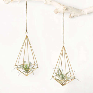 Hanging Air Plant Holder Modern Geometric Planter With Chain Tillandsia Container Himmeli Wall Decor, Gold