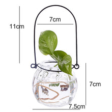 Load image into Gallery viewer, Hydroponic Plants Vase Simple Creative Glass Vase Home Decorative Table Transparent Flower Vase
