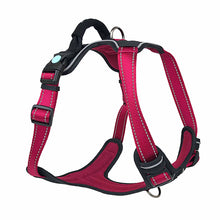 Huskimo Uluru Ultimate Harness