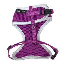 Easy Fit Harness - Aurora