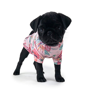 Pug Puppy wearing Huskimo Miami T-shirt