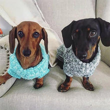 Dogs wearing Huskimo Chunky Knit Jumper in Turquoise and Grey Melange