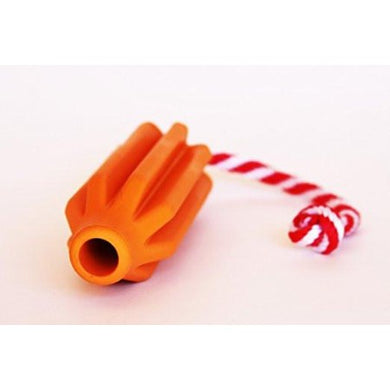 Rocket Pop Dental & Retrieving Toy