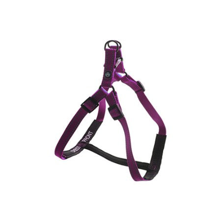 Step-In Harness