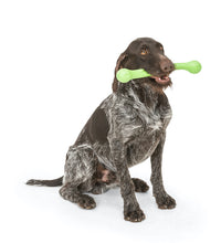Zwig Tug & Fetch Stick