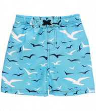 Rugged Butts Soaring Seagulls Swim Trunks