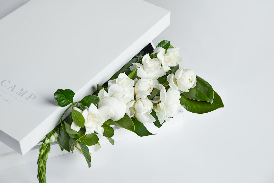 High Camp Gardenia & Peony Box