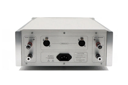 DENAFRIPS THALLO Class AB True Balanced Full Discrete Power Amplifier