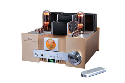 YAQIN MS-650B 15WPC 845 x 2 amplificatori integrati a tubo sotto vuoto Hi-End Tube