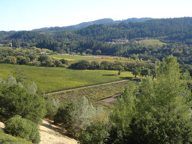 Napa and Sonoma Wine Tour - May 2020