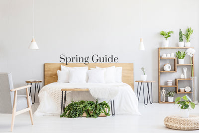 Your Guide to Spring Sprucing
