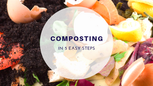 Let's Compost TODAY: 5 Easy Steps for Going Green In 2019
