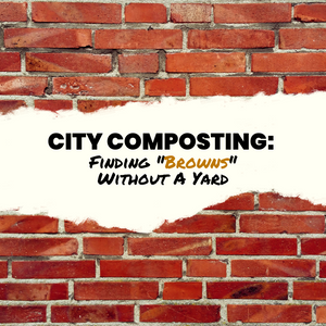 "City Composting: Finding ""Browns"" Without A Yard"