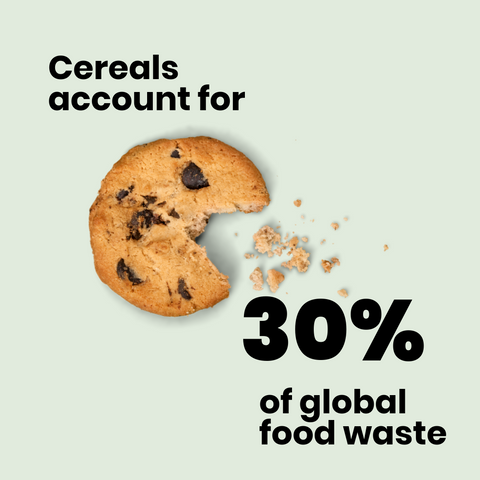 food waste statistics, infographic, food waste infographic