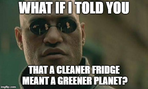Morpheus Meme. Food Waste