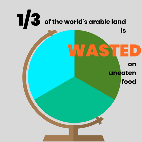 statistic, food waste, infographic