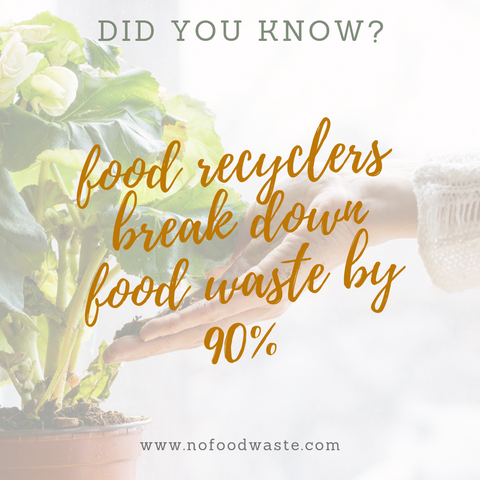 did you know, food waste facts, zero-waste, food waste infographic, food recycling