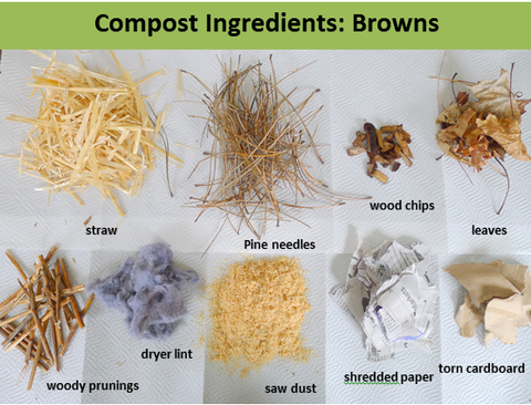 compost ingredients, what to add to compost, compost browns, compost carbon, carbon ingredients, easy compost