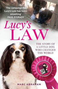 Lucy's Law: The story of a little dog who changed the world