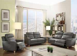 Cayden Loveseat in Gray Leather-Aire Match