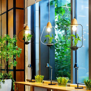 Nordic Iron Pendant Planter Lamp