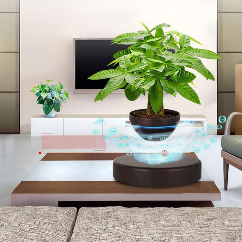 Levitating Bamboo Planter
