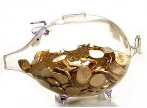 Cute Transparent Glass Novelty Piggy Bank