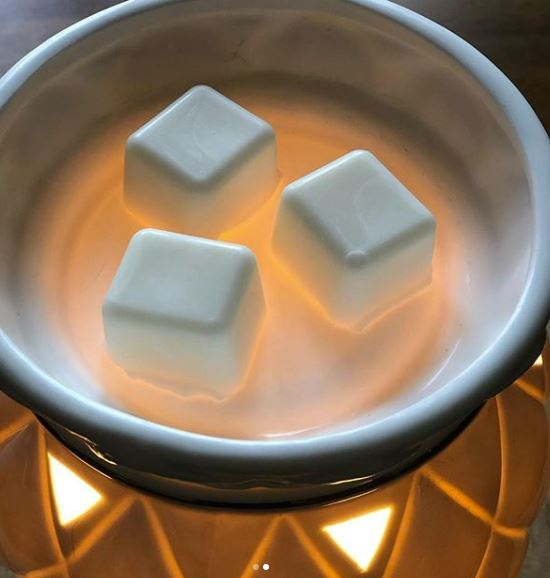 FROSTED JUNIPER SOY WAX MELTS