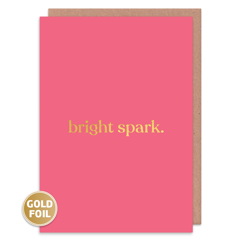 Bright Spark Greeting Card by Amy Wicks - Whale and Bird