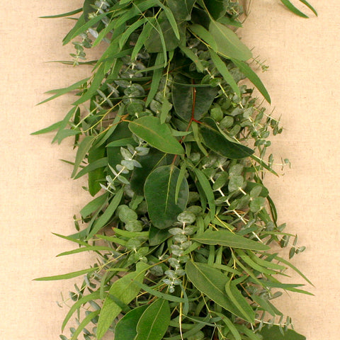 Mixed Eucalyptus Garland 6'