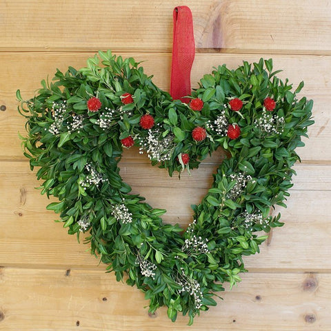 Boxwood Red Heart