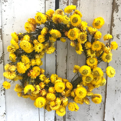 Spring Strawflower Wreath
