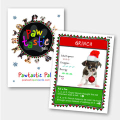 Pawtastic Pals Limited Edition Christmas Collection Cards