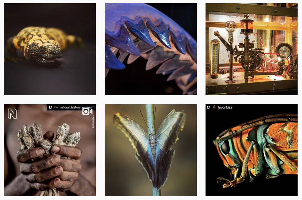 hmns a top instagram feed for girls in STEM