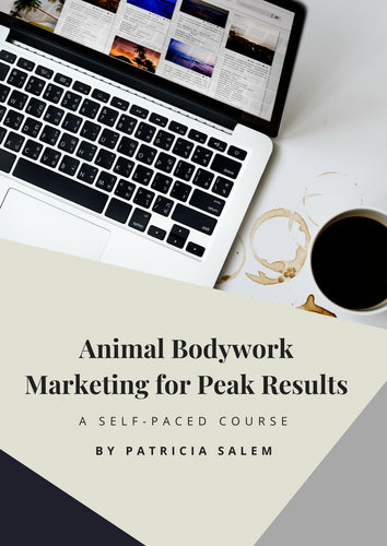 Animal Bodywork Marketing for Peak Results