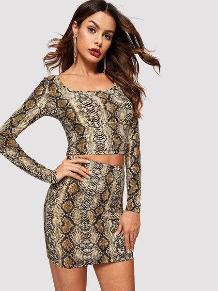 Animal Print Fitted Crop Top and Skirt Set