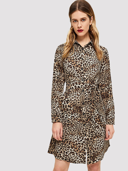 Multicolor Leopard Print Dress