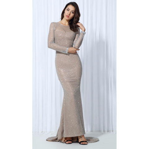 Silver Lattice Beige Evening Gown