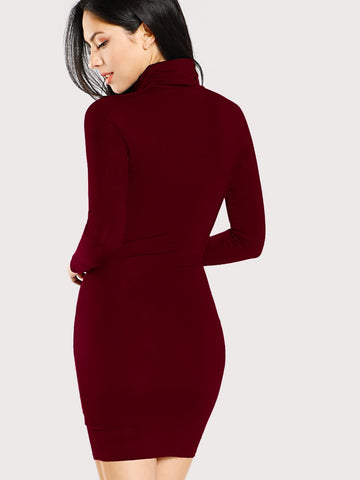Formal Dresses - Women's Trendy Burgundy Turtle Neck Form Fitting Solid Dress