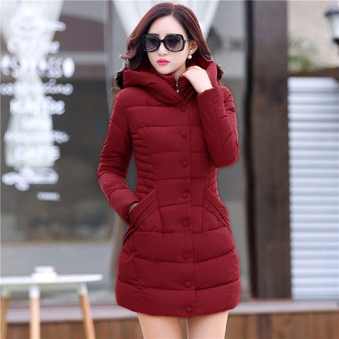 Hooded Long Sleeve Pleated Coat