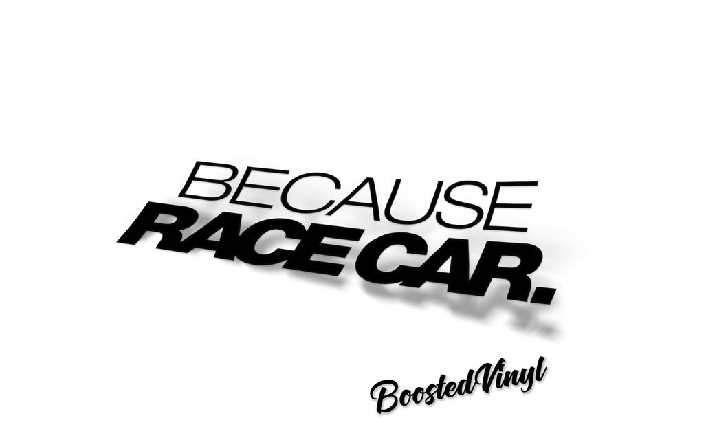 Because Racecar - BoostedVinyl