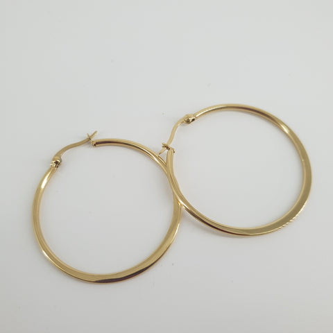 316L Stainless Steel Hoops