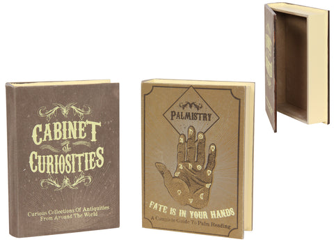 Cabinet of Curiosities Box Box