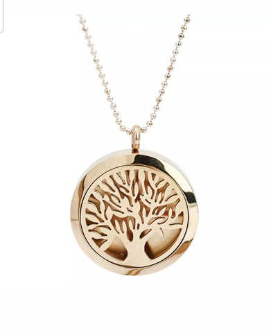 316 Stainless Steel Aromatherapy Diffuser Necklace