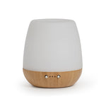 Eco Bliss Mist Aroma Diffuser