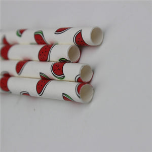Watermelon Paper Straws 25pcs/lot